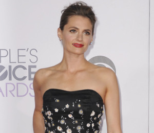 Stana Katic stunning in Carolina Herrera at People's Choice Awards 2015