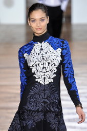 stella mccartney fall 2012 collection