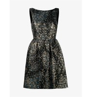 Erdem Kenya Sleeveless Star Embroidered Dress