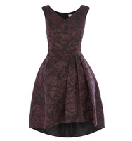 Coast Monnisha Jacquard Dress Black