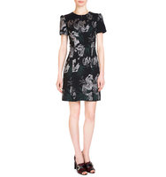 Erdem Aubrey Metallic Embroidered Dress