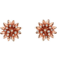 Gucci Flora 18ct Pink Gold Earrings pink