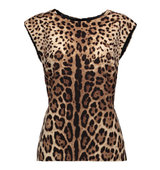 Dolce and Gabbana Dolce Gabbana Wool And Cashmere Blend Mini Dress Leopard Print